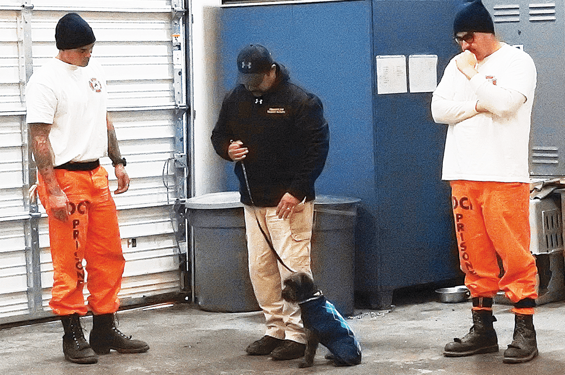 Trainer showing inmate the handling of a pup