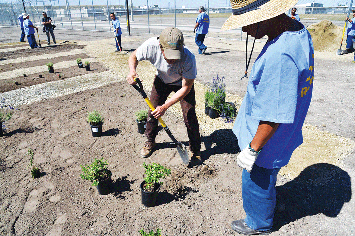 Staff showing incarcerated men how to plant a garden