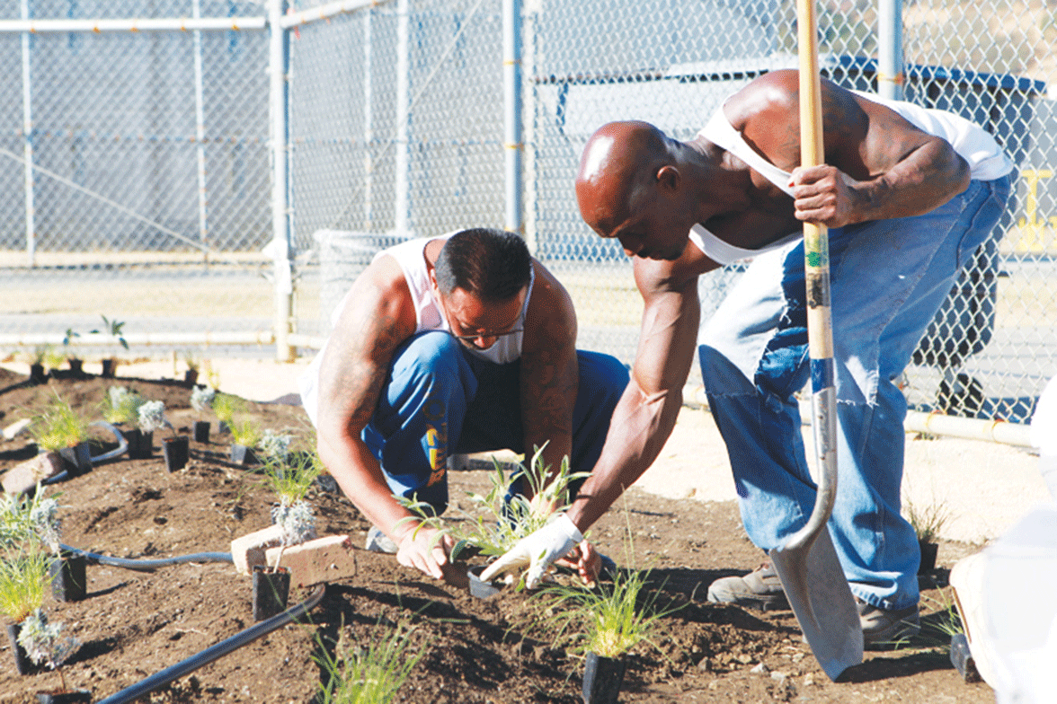 Incarcerated men working in the garden