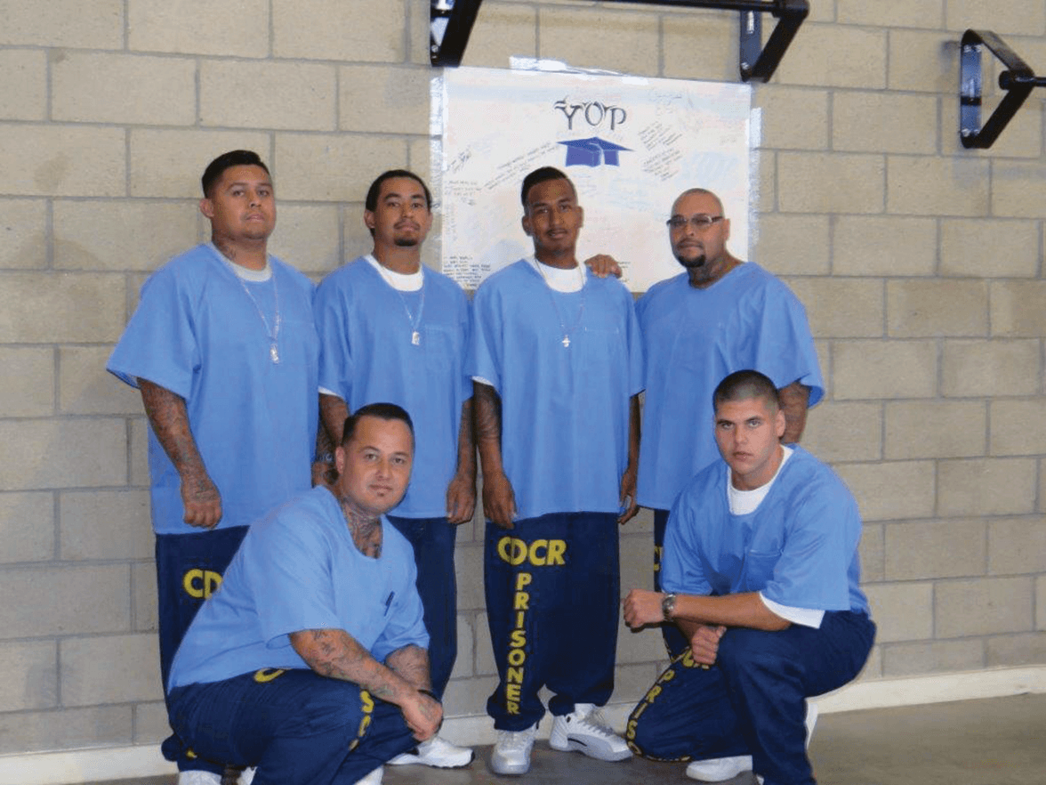 VSP graduates with their mentors